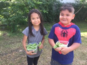 two young children holding onto containers of beans they have picked