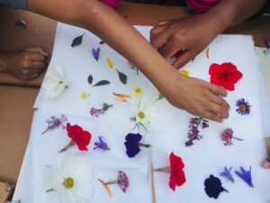 Two hands placing colorful flowers on a white cloth