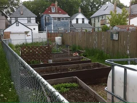 a fenced in garden